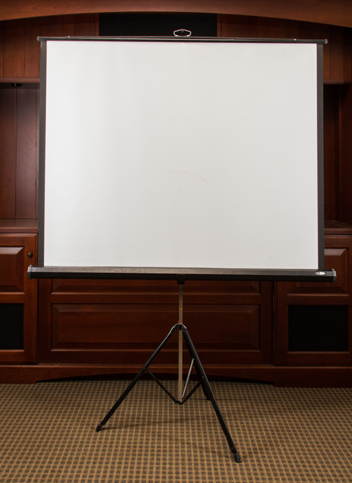 Projection Screen 4x6